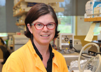 WSU's Leigh Knodler wins prestigious award from Burroughs Wellcome Fund