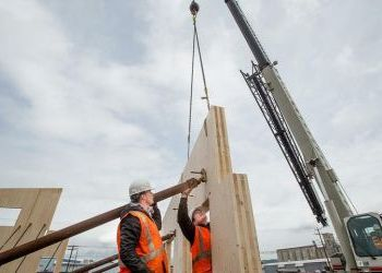On the rise: Local factories part of tall wood-building movement