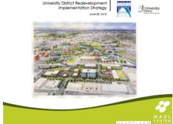 UD Redevelopment Implementation Strategy